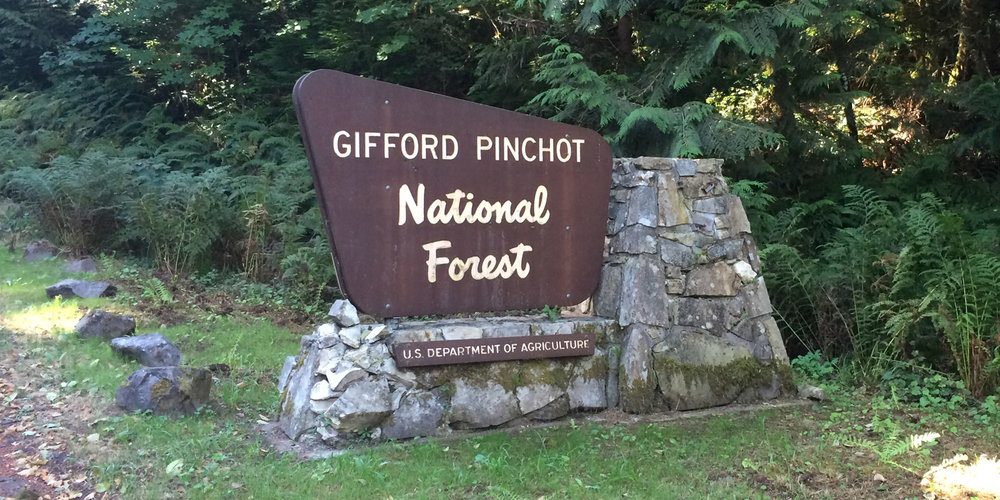 Gifford Pinchot National Forest — WC STUDIO 1375841c4