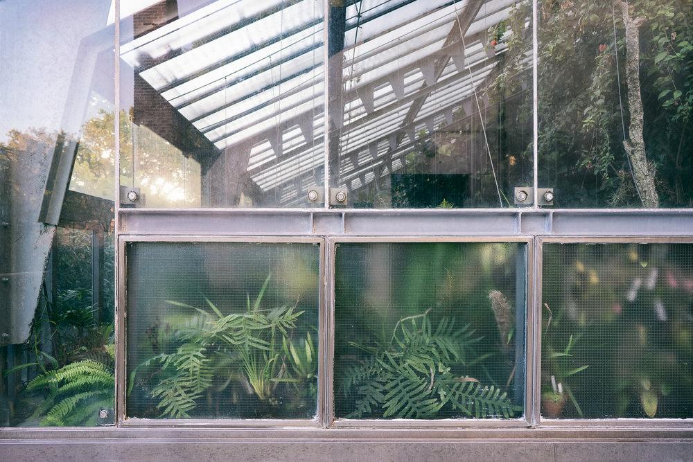Real Jardin Botanico, Madrid, Spain.jpg