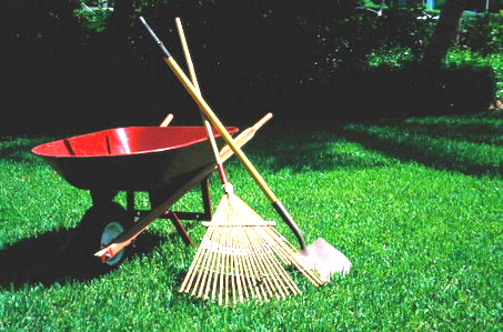 GROUNDSKEEPING   Help with spring planting or fall clean-up to keep our Mary Garden, Peace Park, and grounds beautiful. We also accept donations of lawn mowers, weed wackers, and general gardening equipemnt.