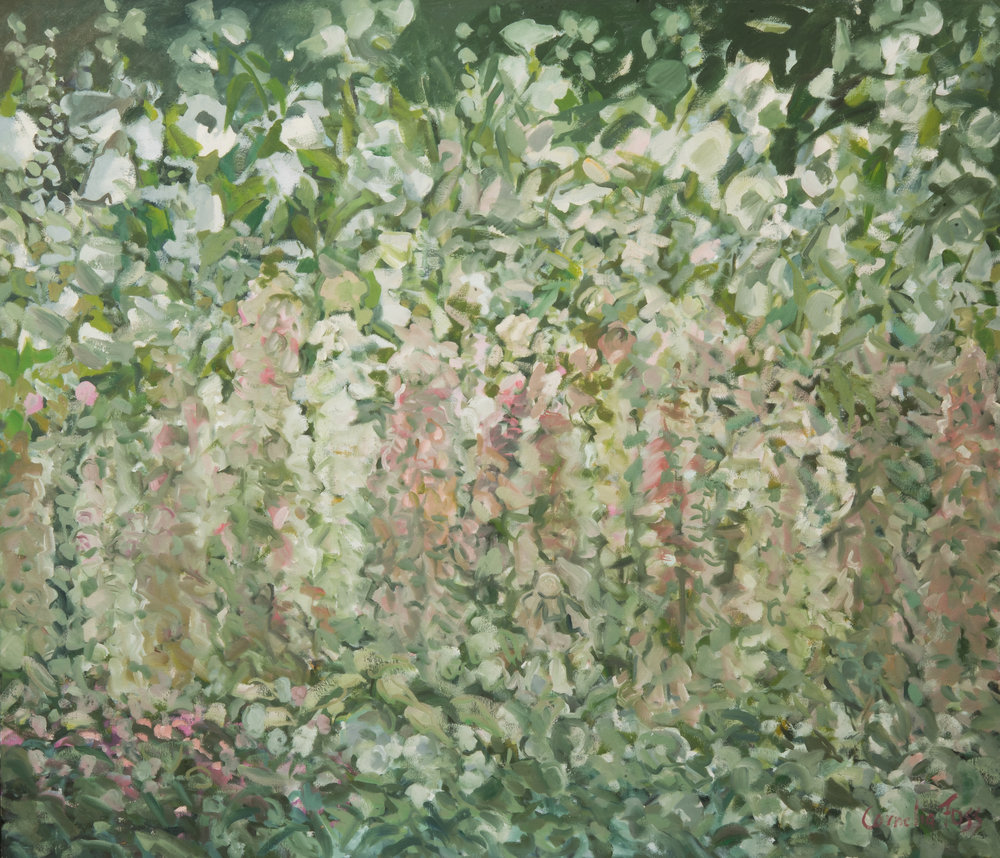 Hollyhocks and Foxgloves, 2012