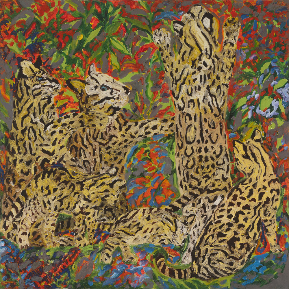 Untitled (Ocelots), 1984
