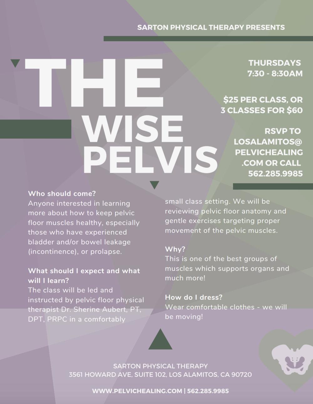 The Wise Pelvis | intro to pelvic floor | What is the pelvic floor? | Sarton Physical Therapy, Pelvic Healing