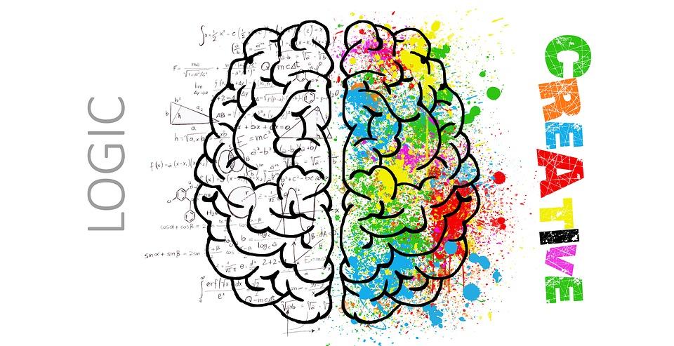 brain-2062055_960_720.jpg