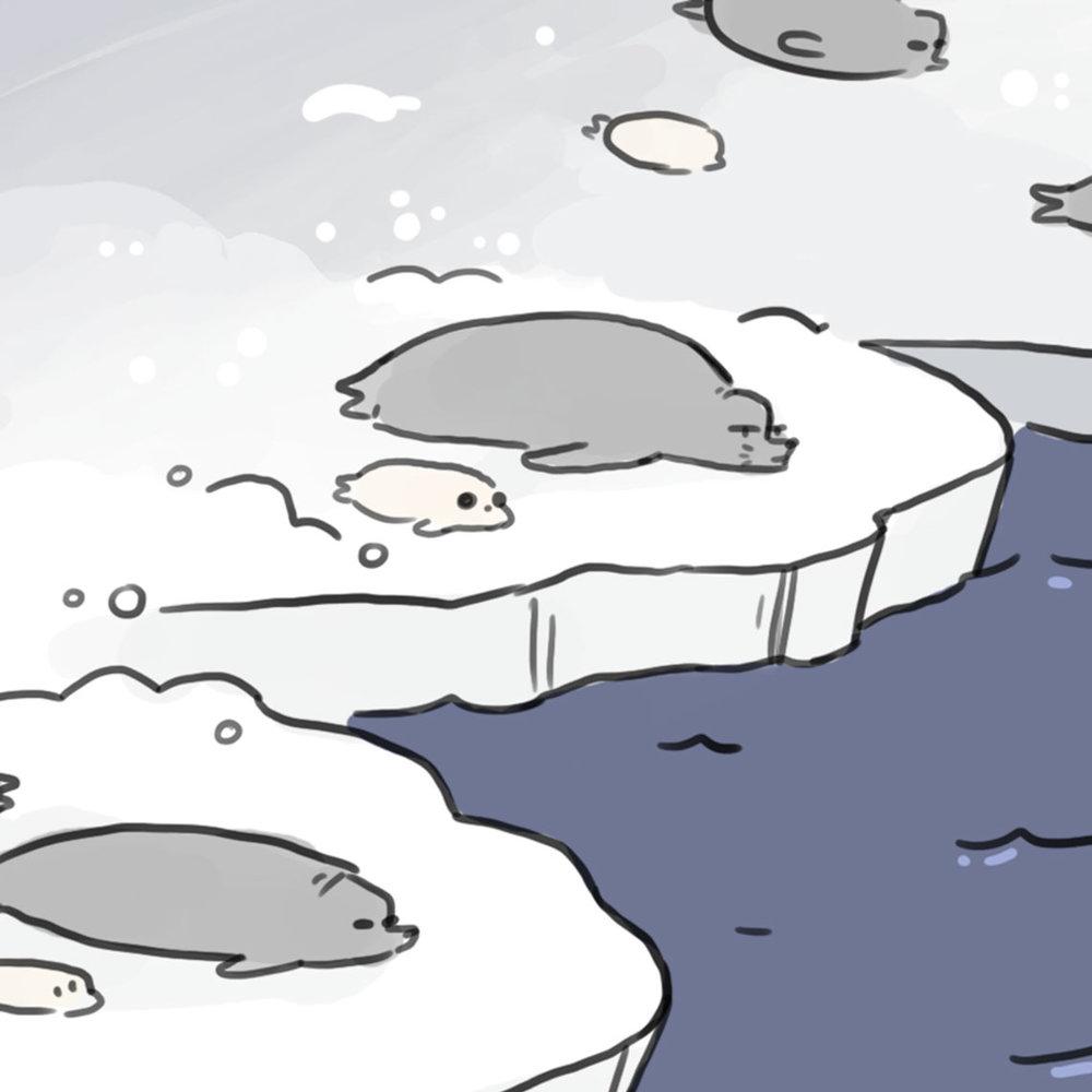 Seals -