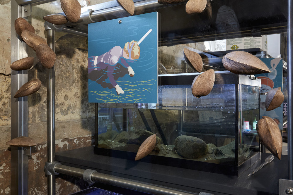 3-D printed replicas of freshwater mussels by Stacy Levy adorn a tank of live mussels in the Mussel Hatchery's Living Laboratory.