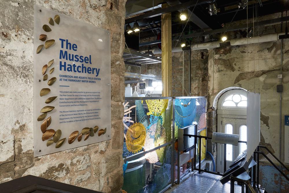 Laser cut acrylic diatoms and 3-D printed mussel shells contribute to the educational and visual interest of the historic structure that houses the Mussel Hatchery, the Fairmount Water Works.