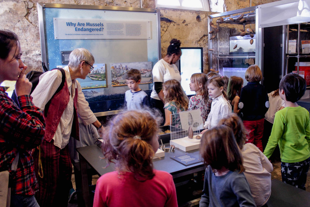 The center of the Mussel Hatchery provides a gathering space for school groups to discuss, learn and share.