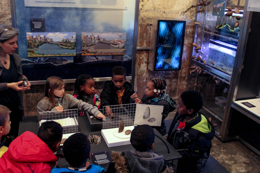 Students gather at the drawing and observation table at the Mussel Hatchery.