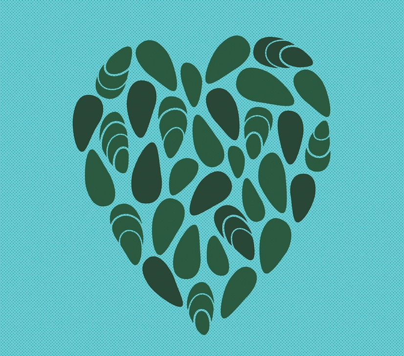 A love note to freshwater mussels, designed by Heads of State for a graphic poster series featuring many views of water.