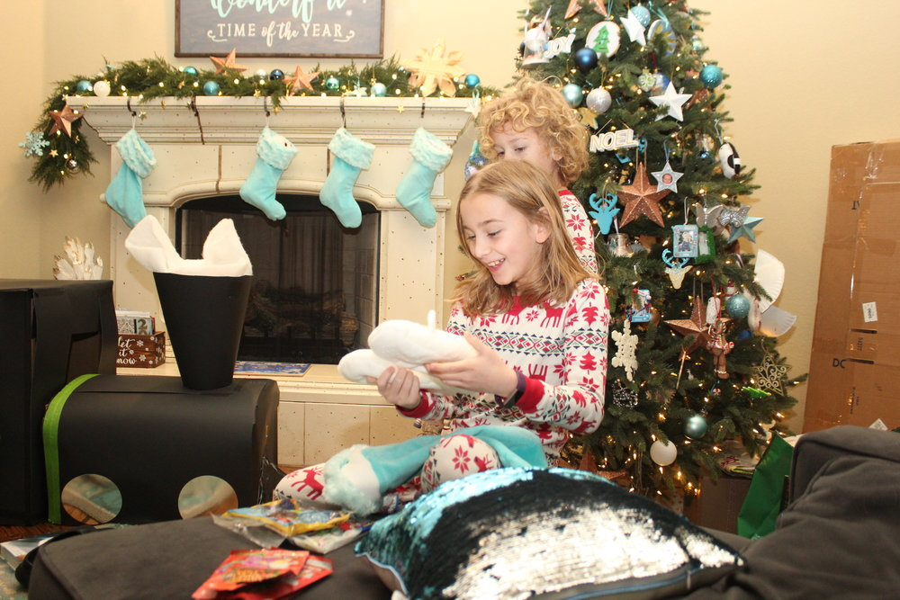 Christmas 2018! Serenity was thrilled about getting unicorn slippers, pillows with the sequins that flip to change colors, a rock collection, and animal jam figures!