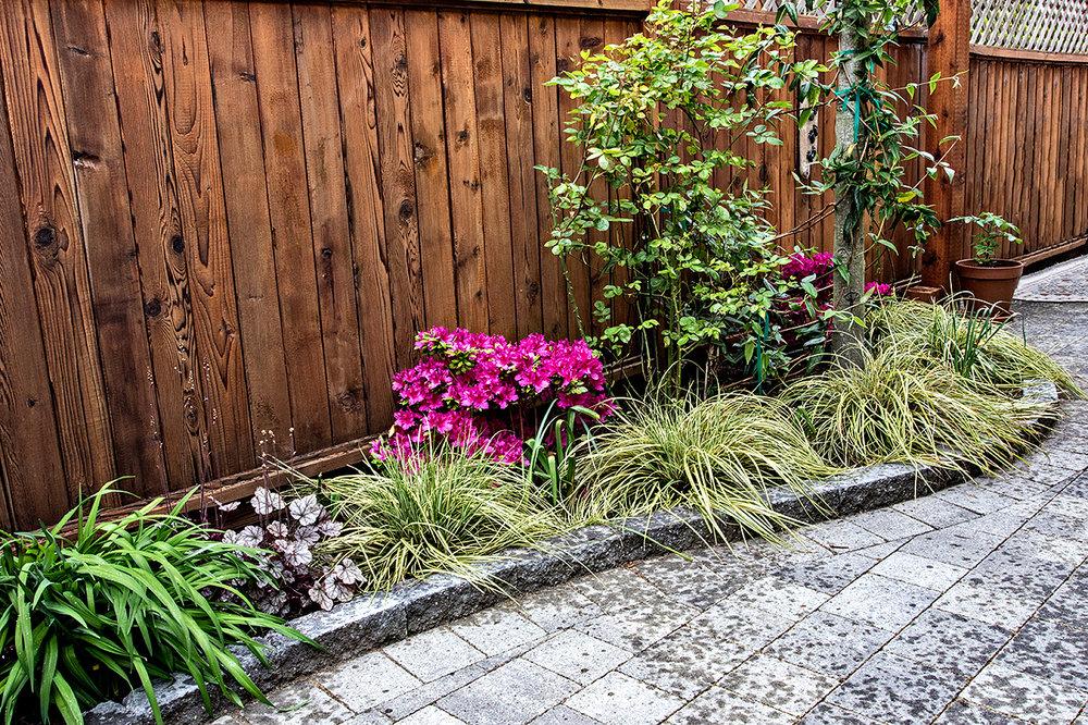Mustang-Landscape-Garden-Flowers-Design-Victoria-BC.jpg
