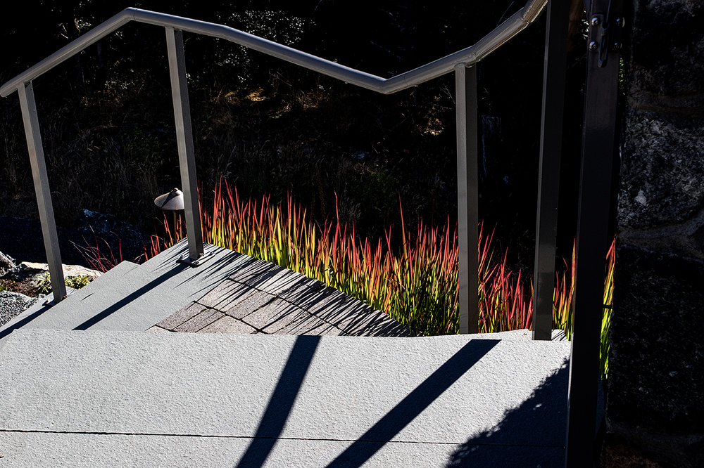 Cliffside garden-MustangLandscape-Victoria-BC-garden-9.jpg