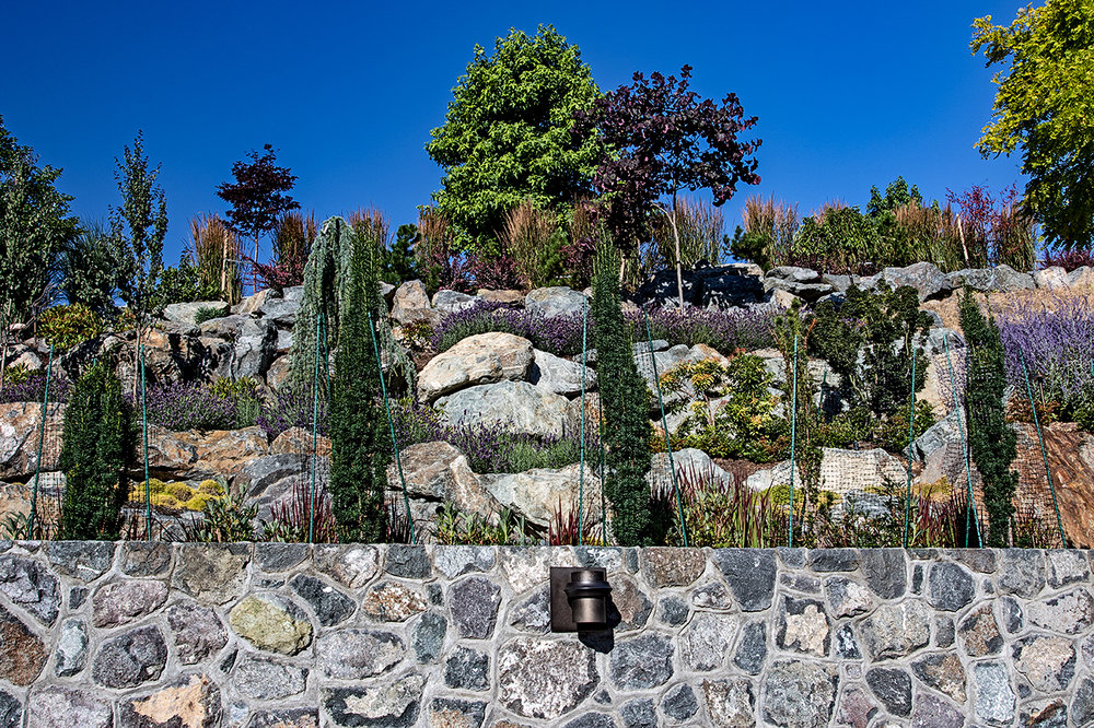 Cliffside garden-MustangLandscape-Victoria-BC-garden-8.jpg