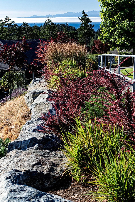 Cliffside garden-MustangLandscape-Victoria-BC-garden-rock-wall.jpg