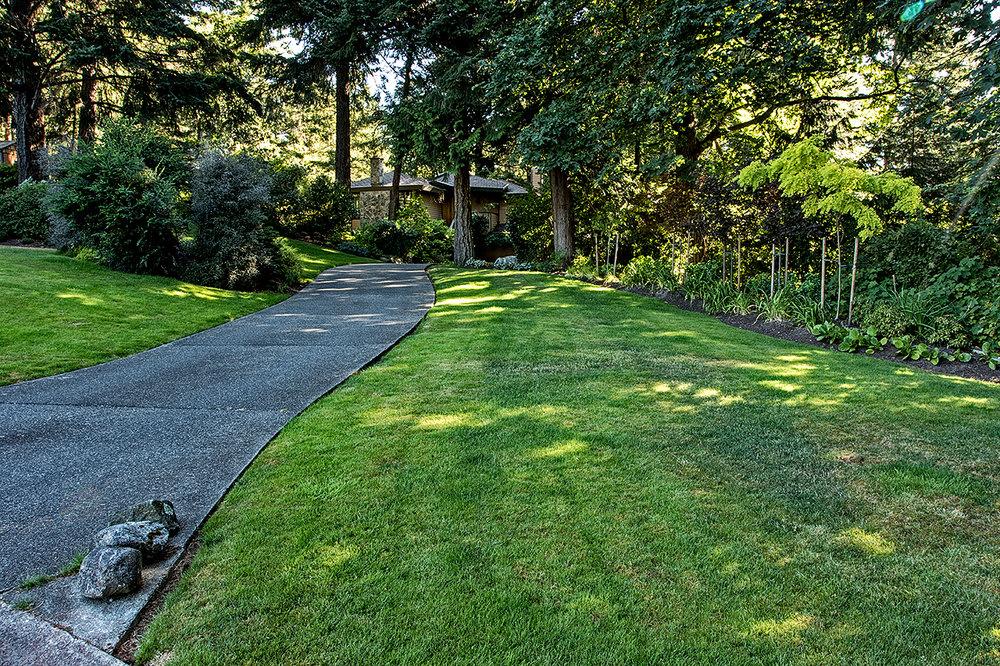 Woodland garden-MustangLandscape-Victoria-BC-garden-path.jpg