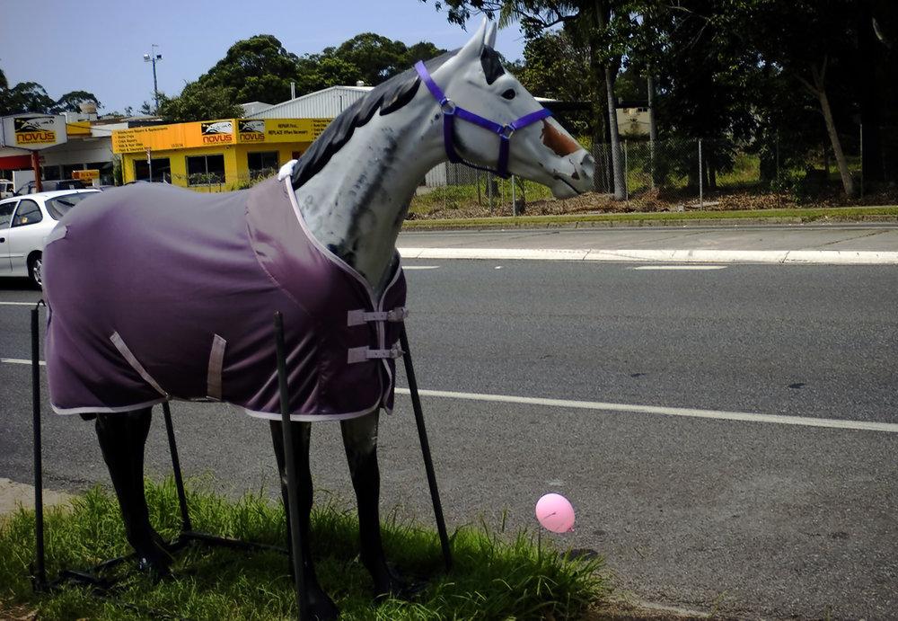 013_didi-s_gilson_australian_street_photography_3legged_horse_pink_balloon_coffs_2006.jpg