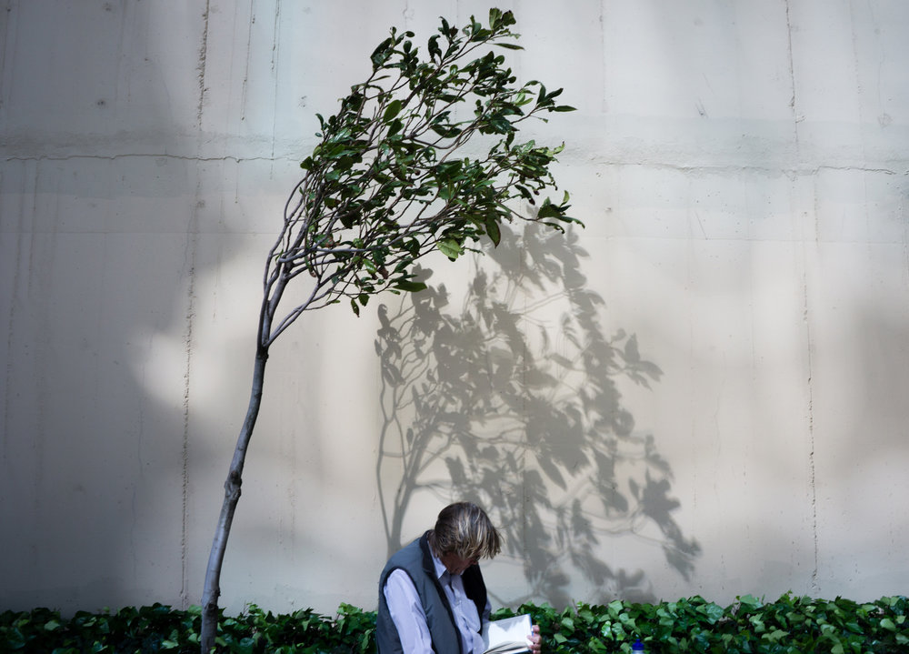 justin_tan_torres_australian_street_photography_tree_reading_man_lunchtime_perth_2015_06..jpg