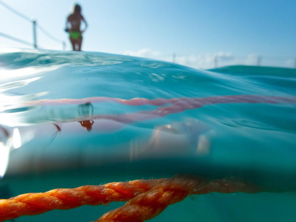 rachael_willis_australian_street_photography_sydney_bondi_icebergs_24_hour_project_2018_04.jpg