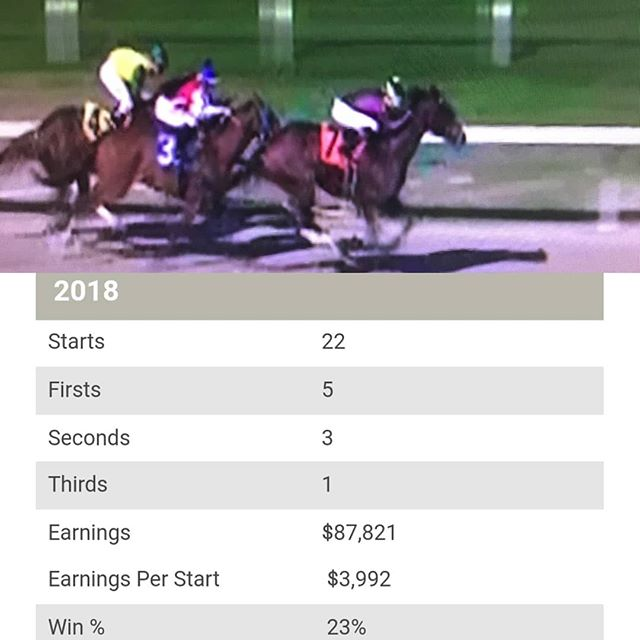 2018 was a great first year out on our own thanks to great owners, horses, and staff!! 2019 hopefully will be an even bigger year!! Getting off to a great start with our first start and first win of 2019 in the third race today @fairgroundsnola with Babaknowsevrything!!