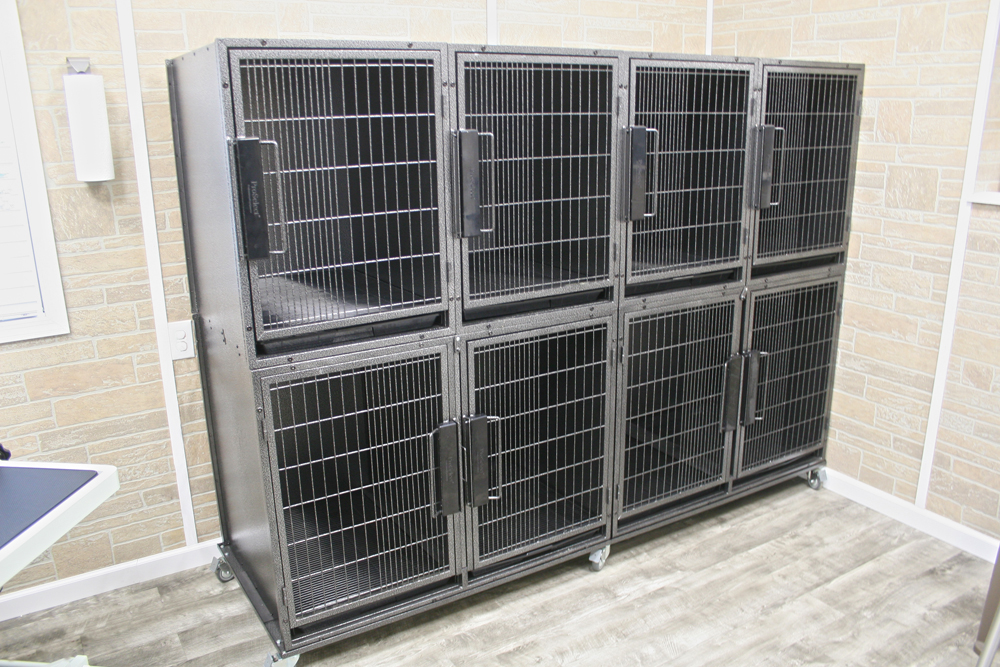 Nice New Clean Kennels