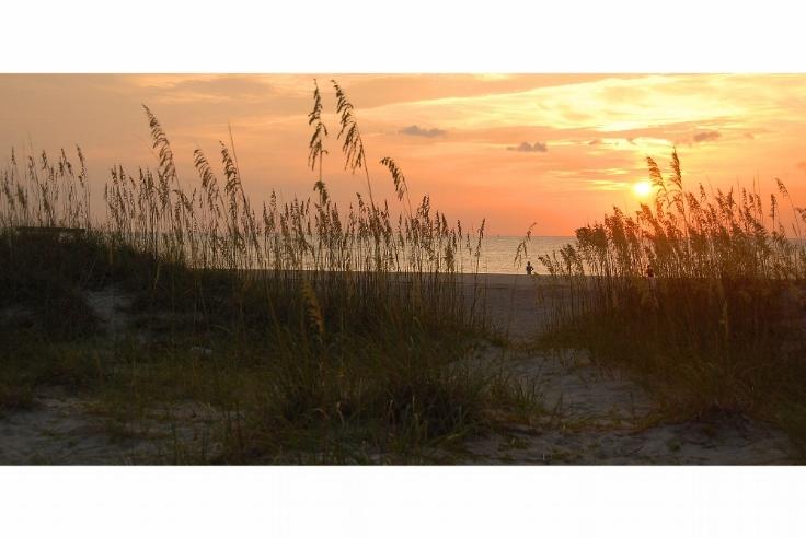 sunrise-1633990_1920.jpg