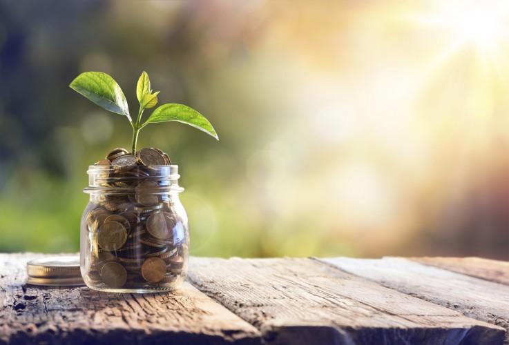 Savings -
