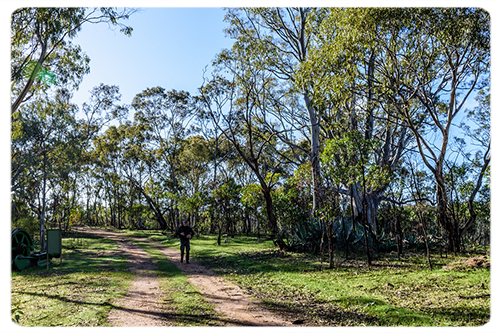 Barossa Goldfield Trail.png