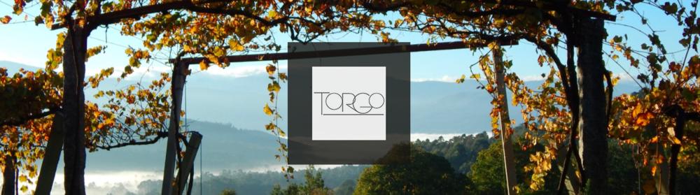 Torgo översikt och logga.png