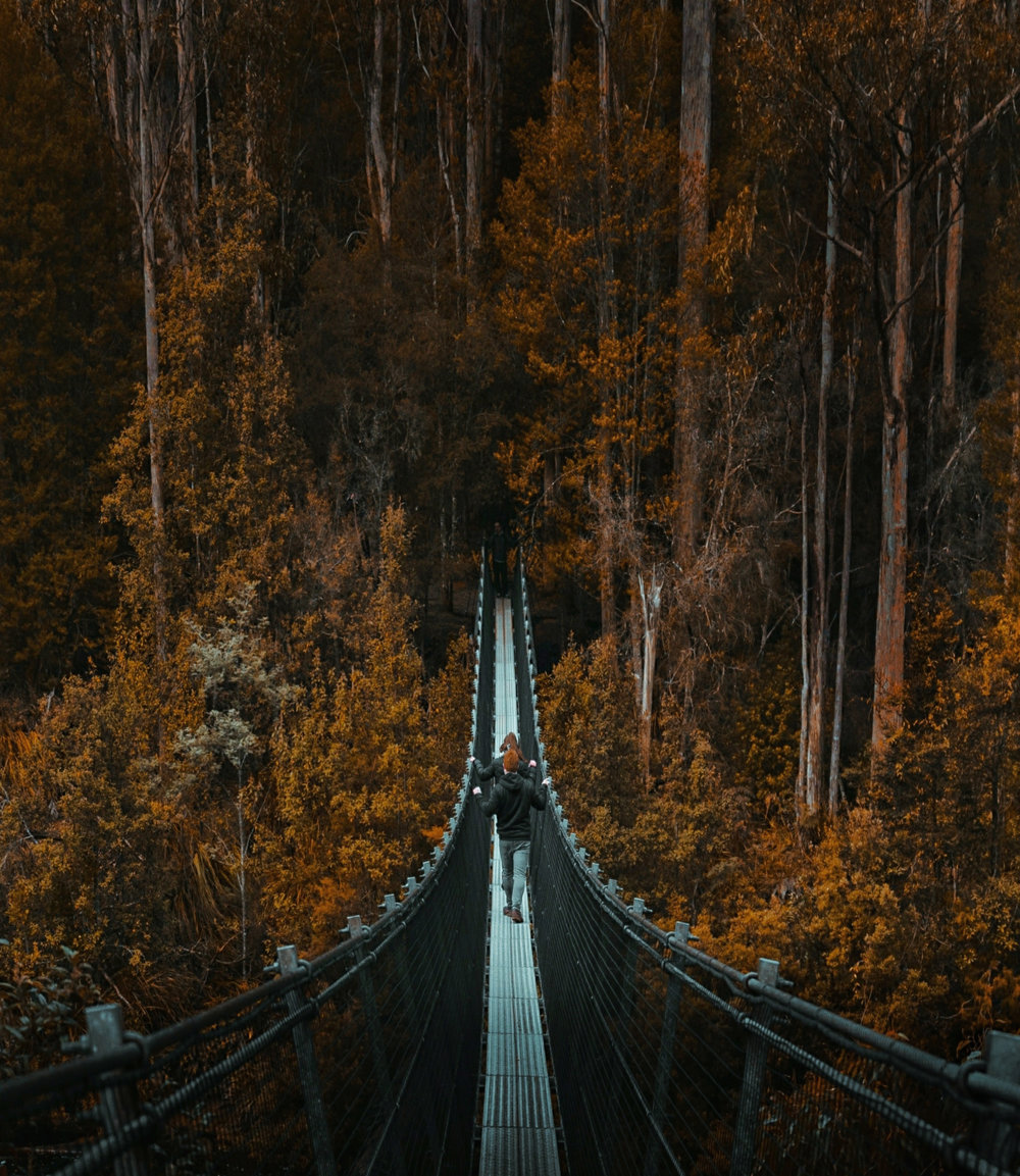 Tahune Suspension Bridge, Tasmania