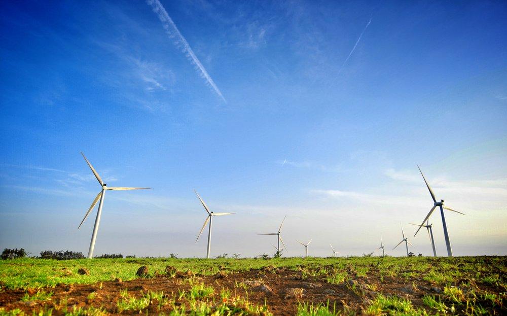 Anjo Miranda, Jeju Windmills.jpg