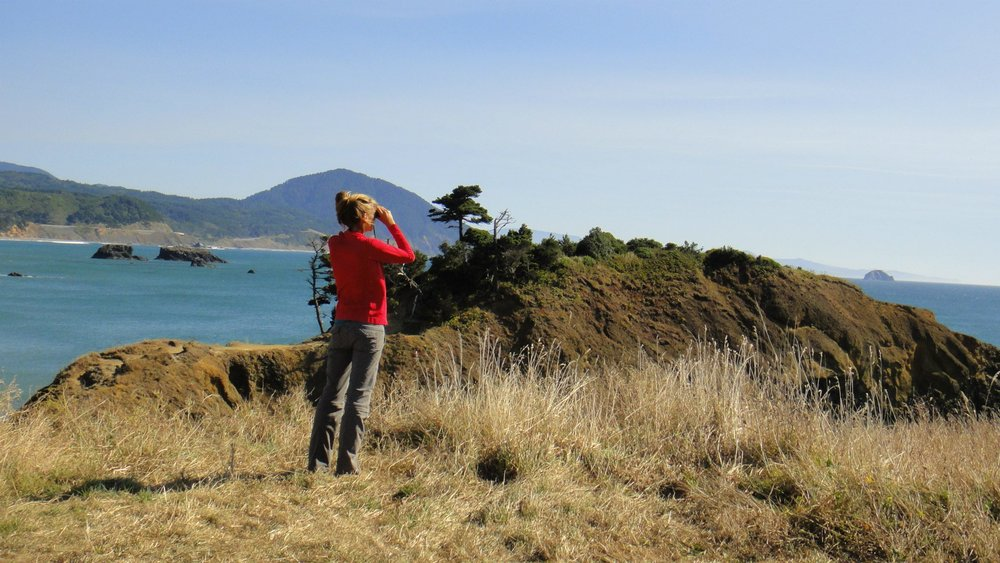 Port Orford Whale Watching