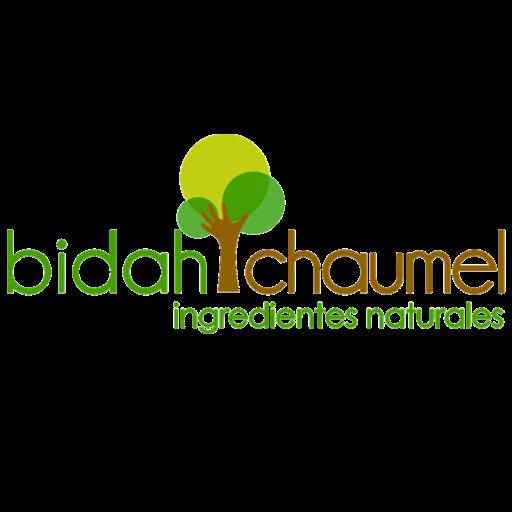 logo-bidah-chaumel.png