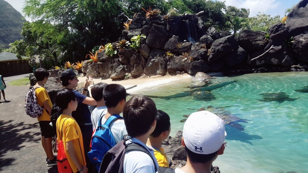 Sea Life Park 60.jpg