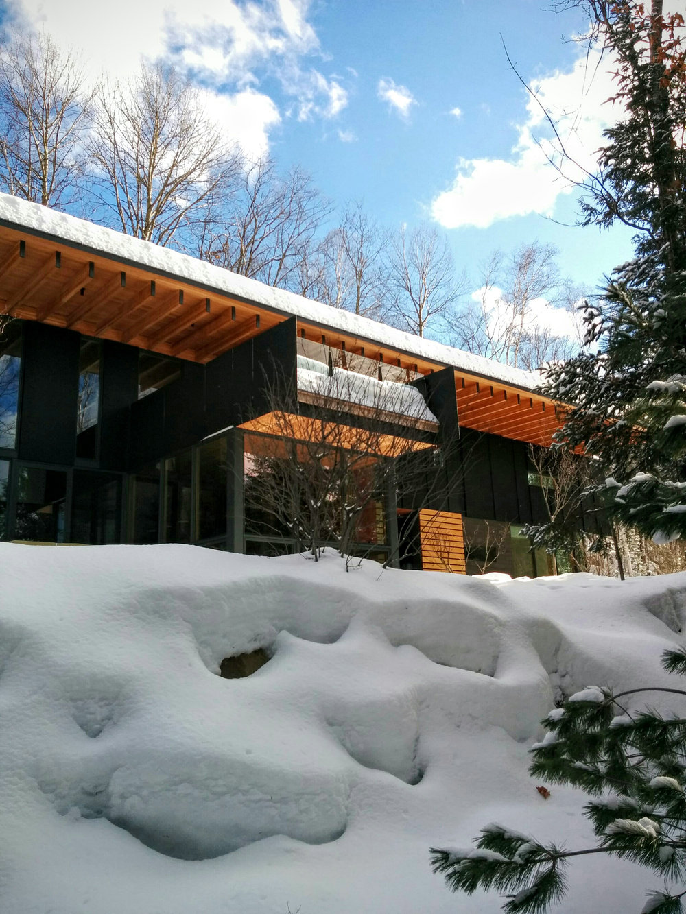 Modernist Home Sits Quietly in a Winter Forest