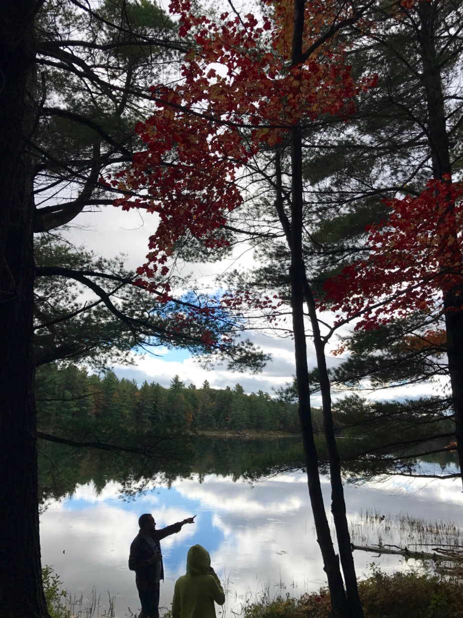 The Sojourn to Maple Lake