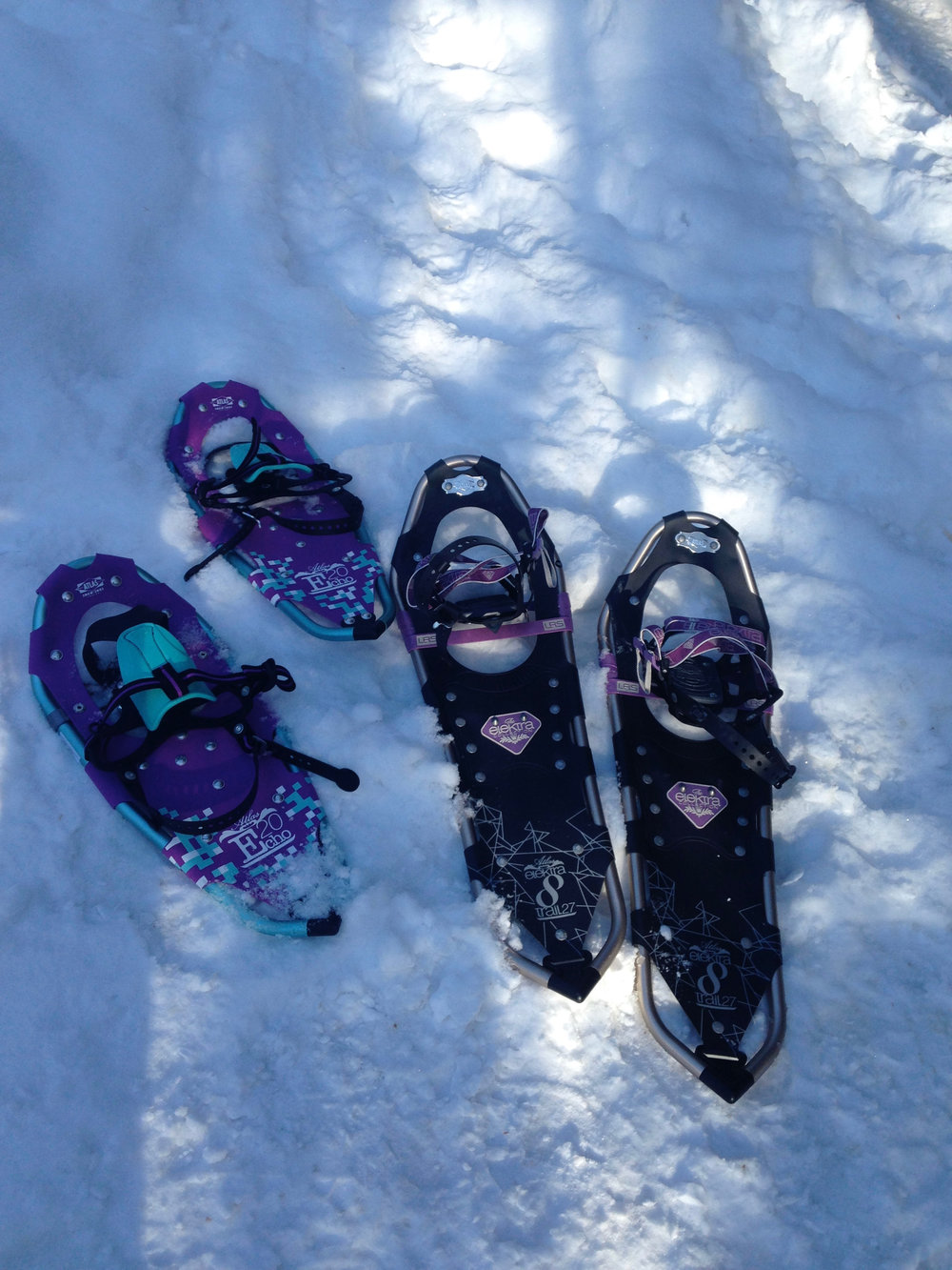 Snowshoeing the Extensive Winter Trail Network at The Bear Stand