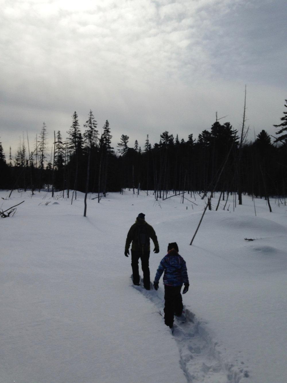 Snowshoeing Through a Winter Expanse