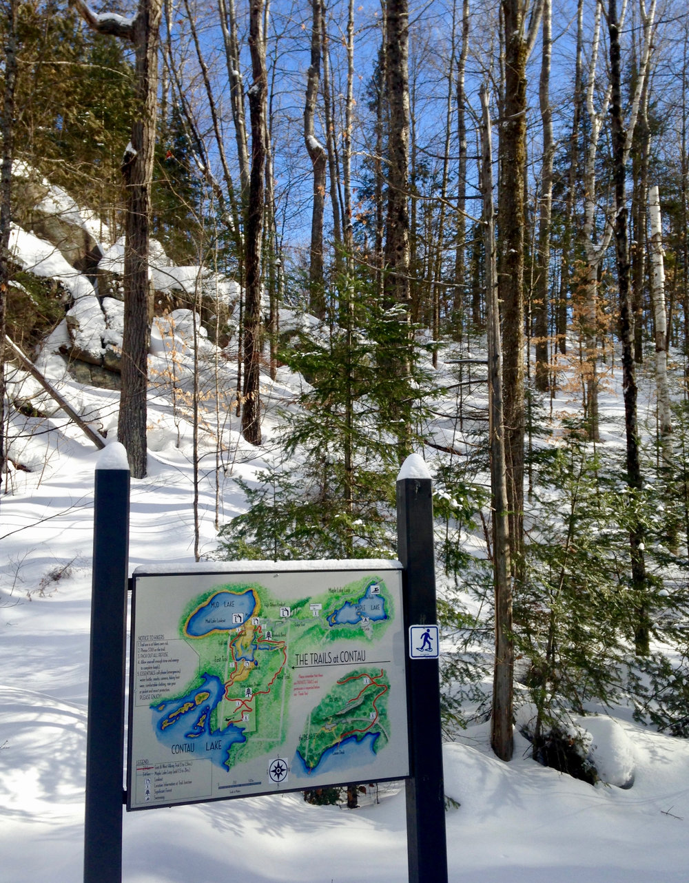 Winter Trailhead at The Bear Stand