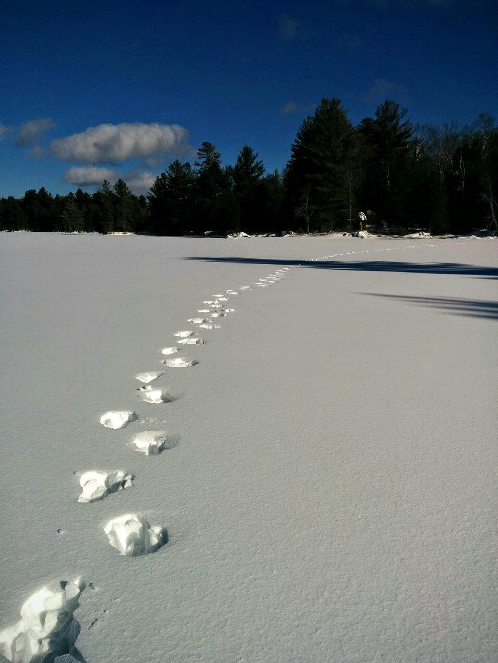 Trek Across a Frozen Lake
