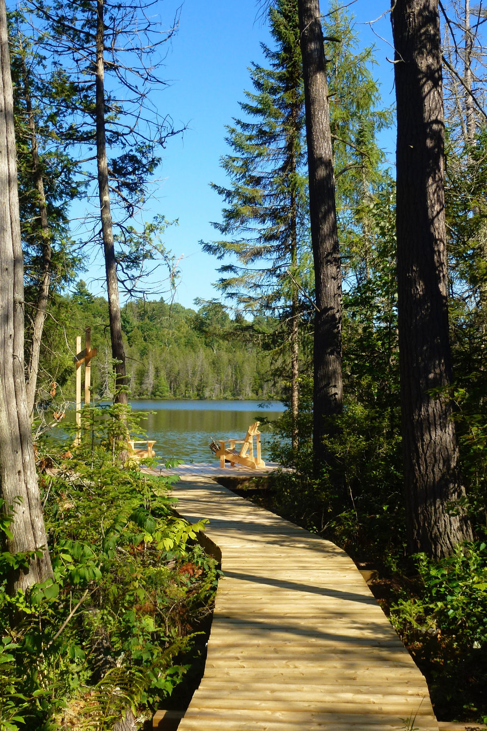 The Boardwalk to Mud Lake at The Bear Stand