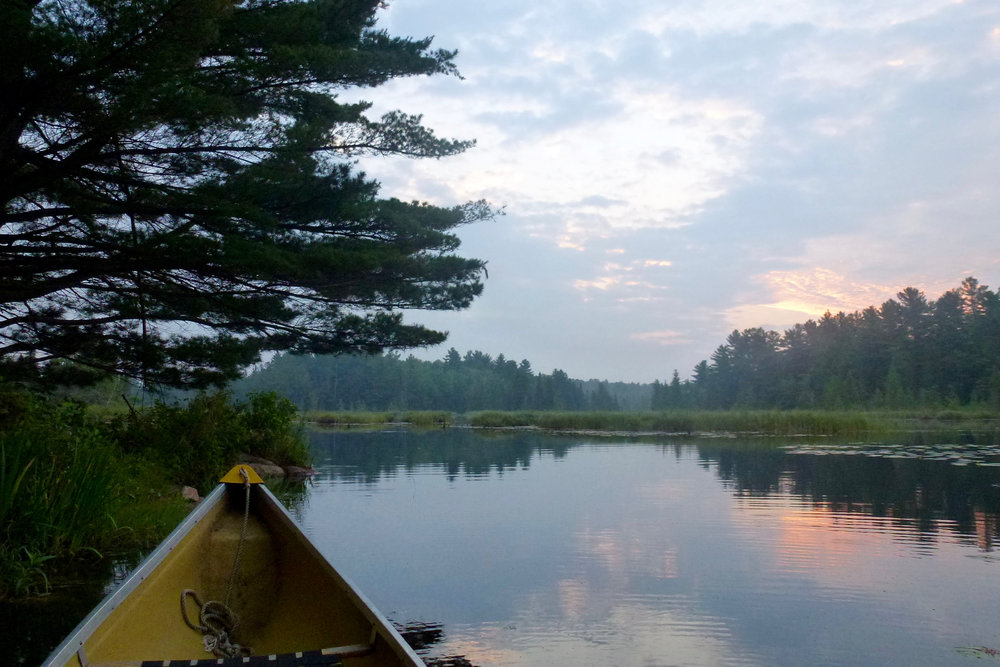The Serene Calm of Paddling at Dawn at The Bear Stand