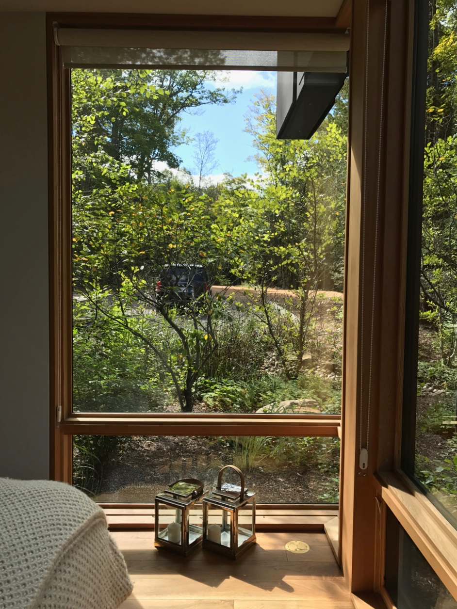 The Lower Guest Bedroom - Your Personal Forest Retreat