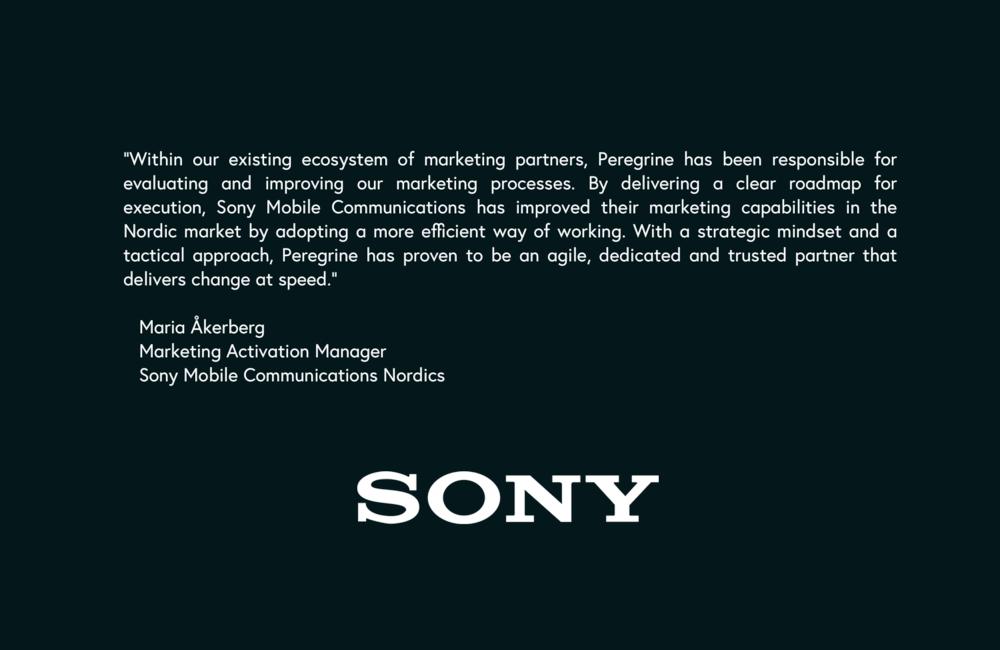 Sony Testimonial Slide 2.0.png