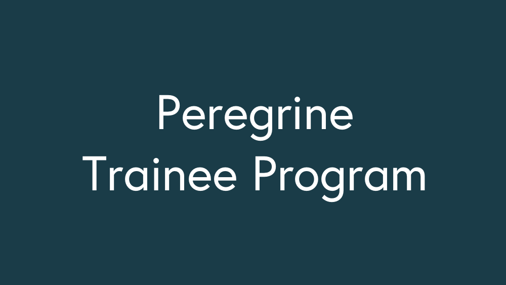 Trainee program Puff.png