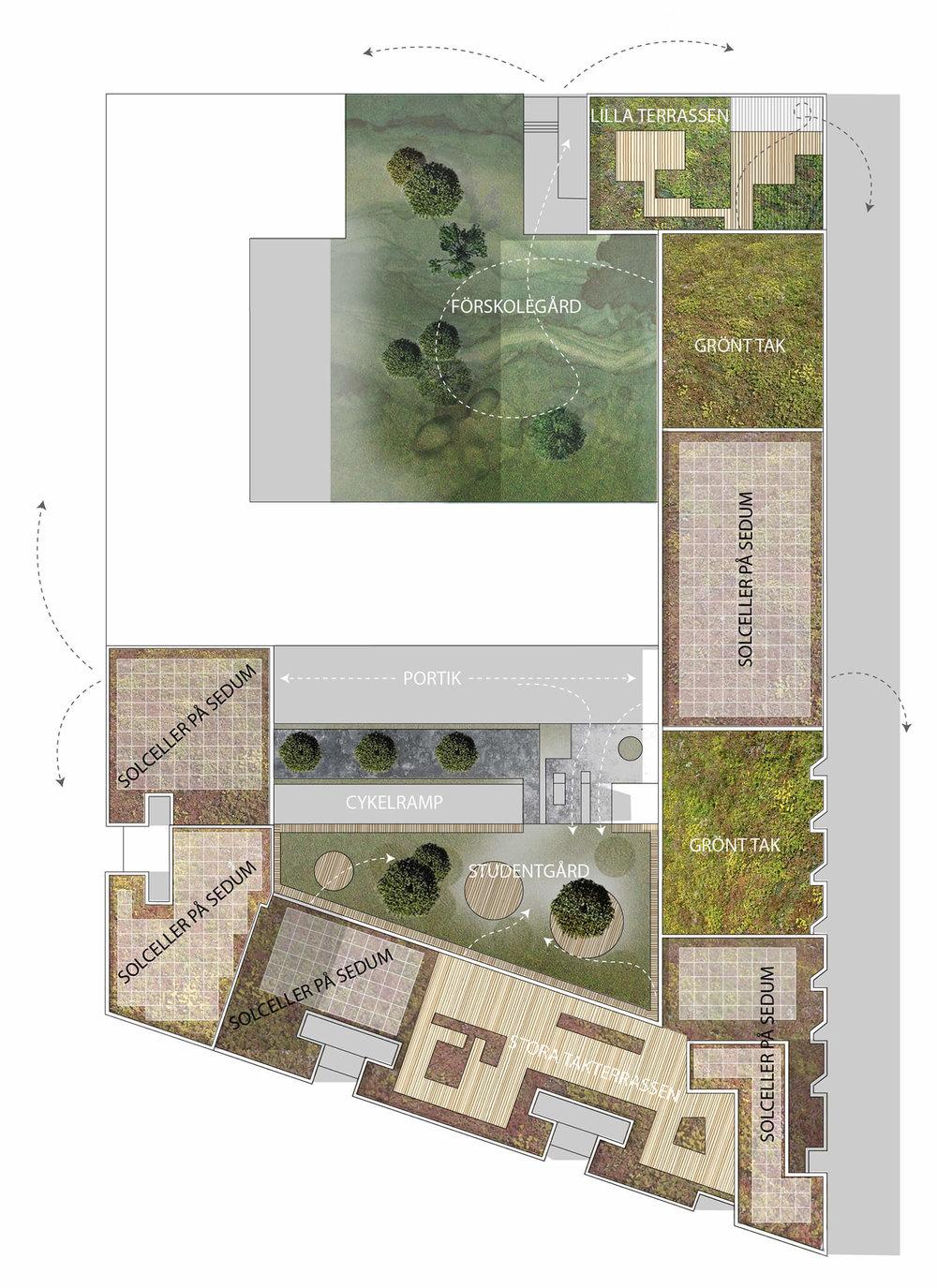 gröna tak för stora och små - På tak och gård möts ekologisk- och social hållbarhet. Vi blandar gröna tak med mycket växtlighet (i upphöjda bäddar för ordentligt jorddjup) och solceller på sedumtak med spännande takterasser där man lätt hittar sin egen lilla plats även om många delar på platsen. Taken är