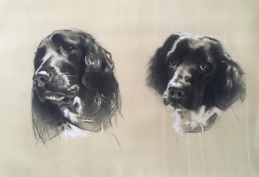 Munsterlanders, Inca and Maya. Charcoal and white chalk