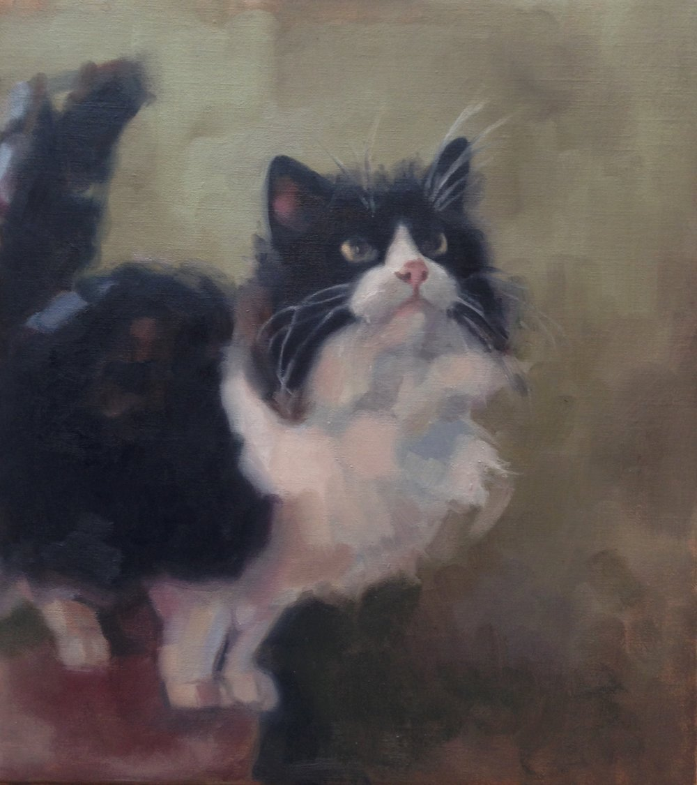 Oil on canvas, Cat's whiskers. 16x18 inch.jpg
