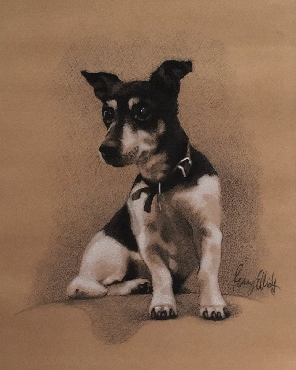 Petal, Charcoal and chalk. Terrier
