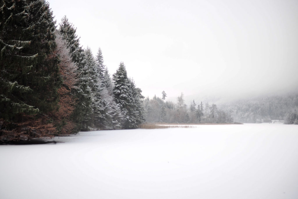 reintaler-see-tyrol-austria-winter6