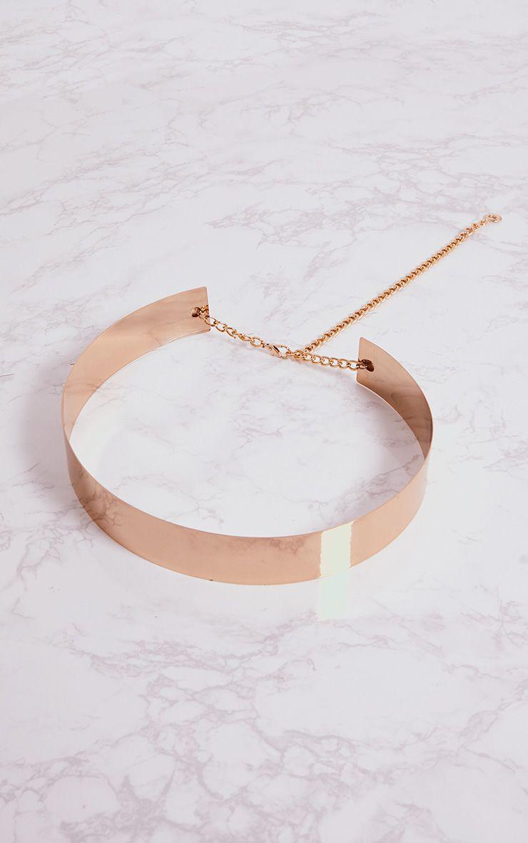 Gold Belt PLT.jpg